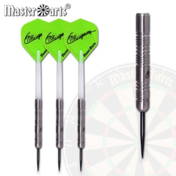 Steel-Dart-Set Michael van Gerwen 25 g - 2